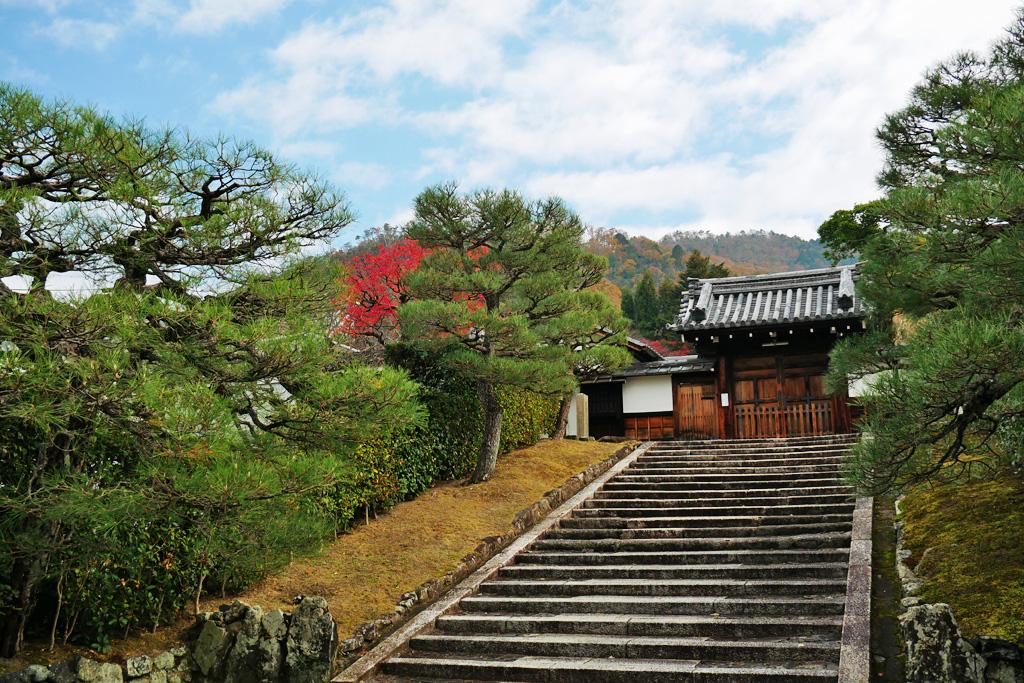 秋の霊鑑寺の写真素材