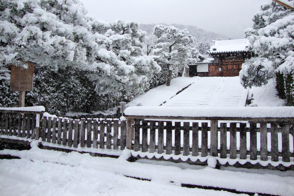 雪の霊鑑寺の写真素材