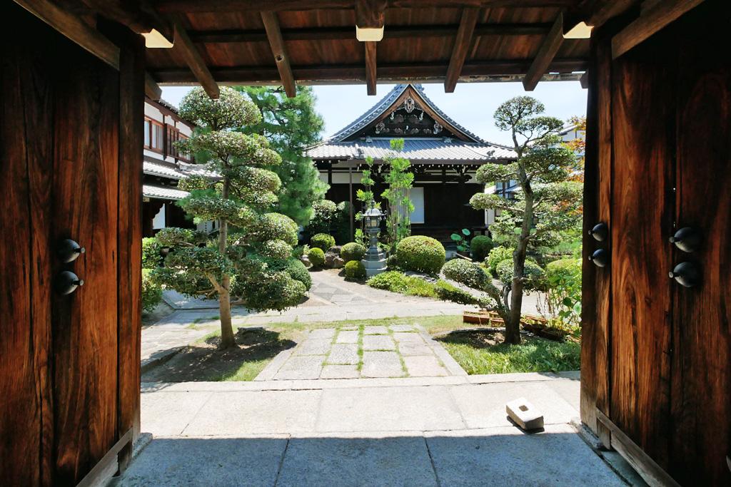 蓮光寺の写真素材