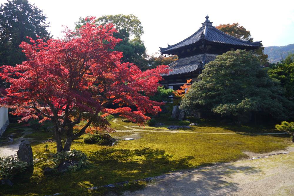 鹿王院の紅葉の写真素材