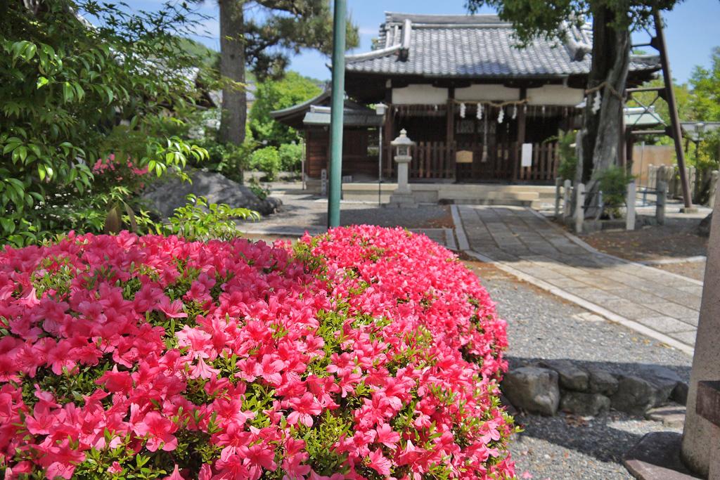 六請神社の写真素材