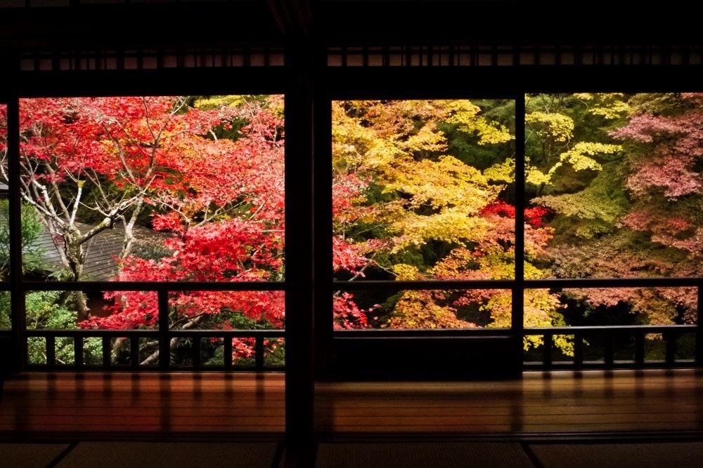 八瀬の瑠璃光院の紅葉の写真素材
