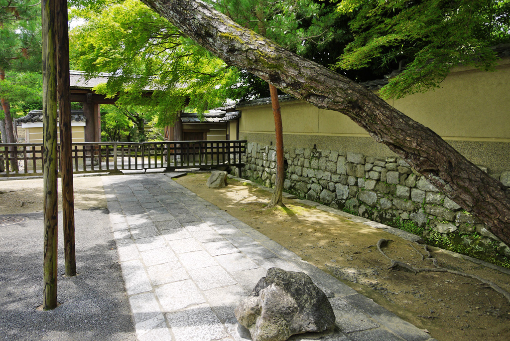 大徳寺 龍光院の写真素材