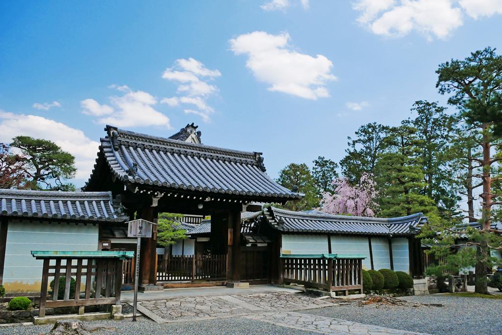 妙心寺 龍泉庵の写真素材