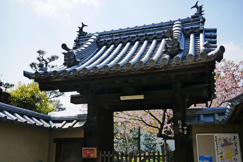 妙心寺 龍華院の写真素材