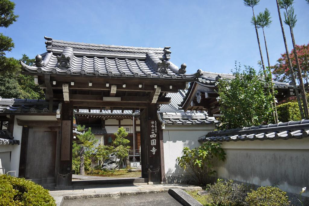 西圓寺の写真素材