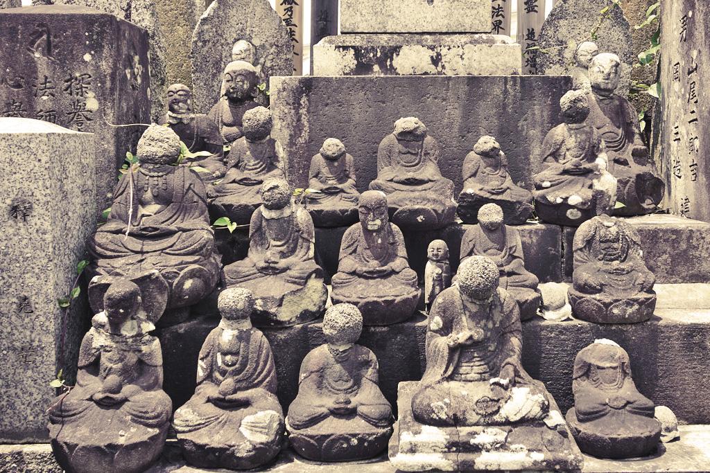 西向寺(紫野)の写真素材