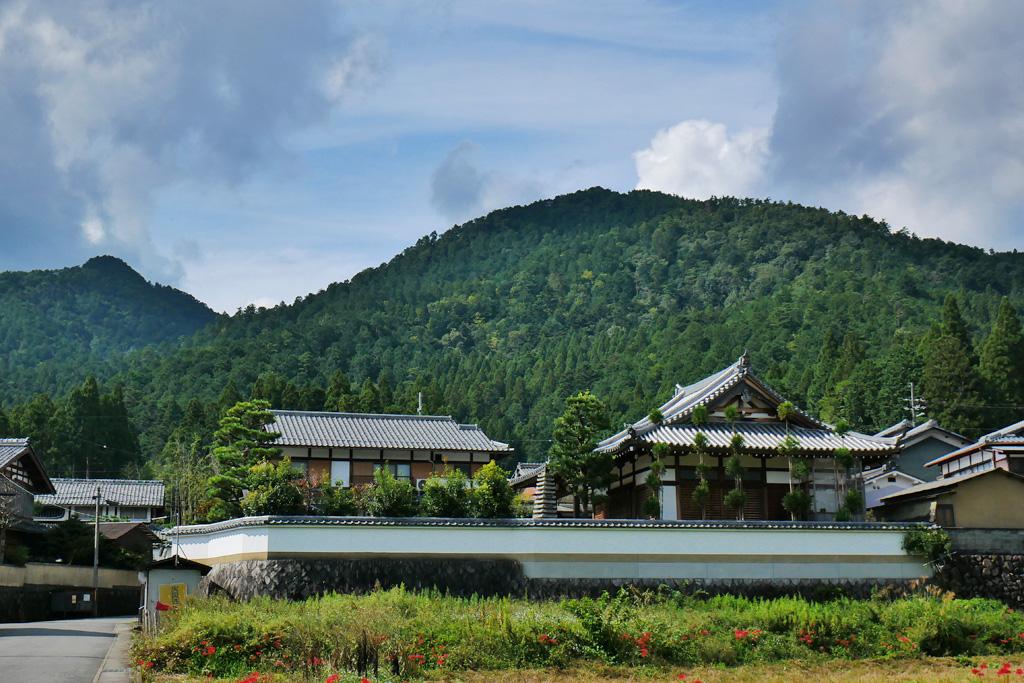 大原 西徳寺の写真素材
