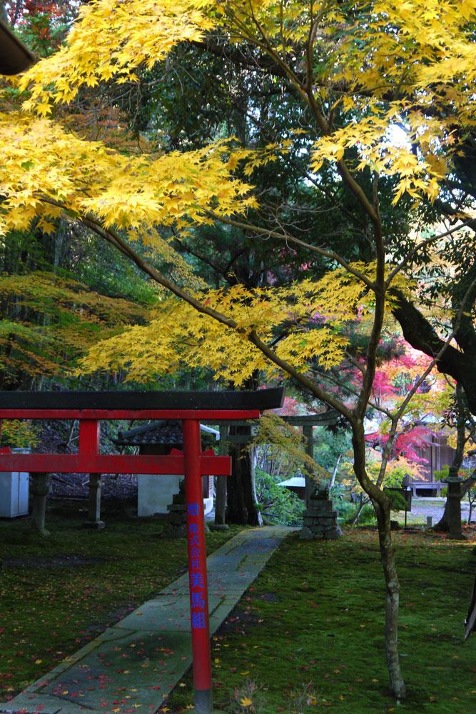 桜天満宮・積善寺の紅葉