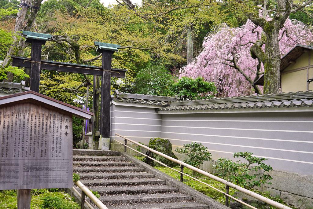三宝寺(鳴滝)の写真素材