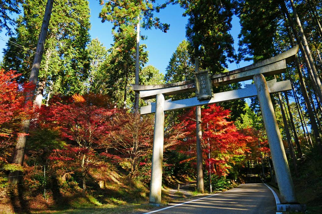 猿丸神社の紅葉の写真素材