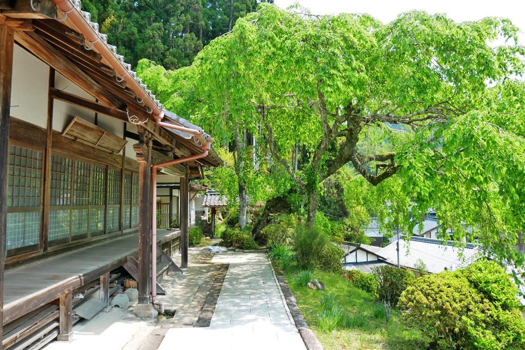 和束町湯船の西願寺の写真素材