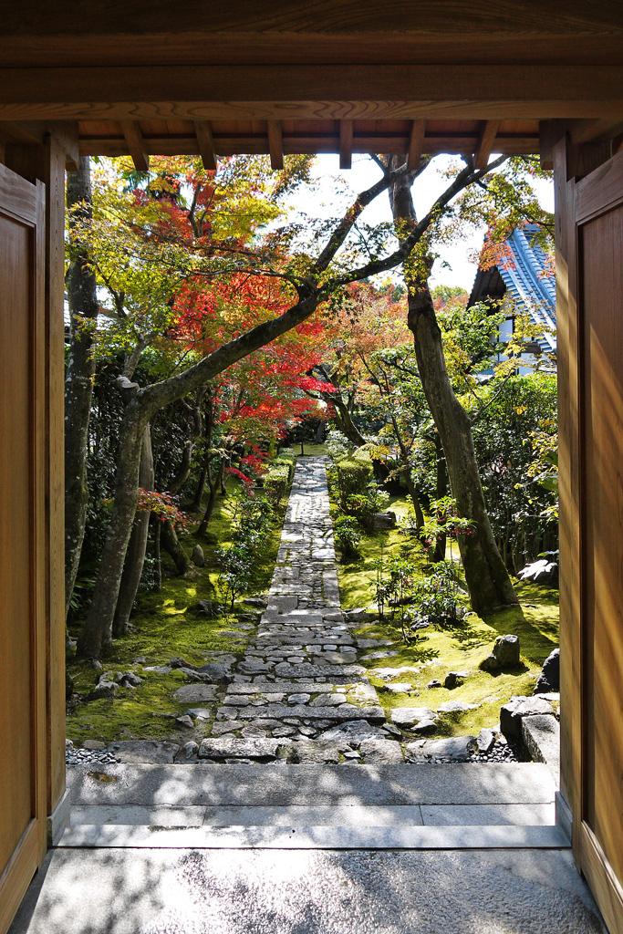龍安寺 西源院の写真素材