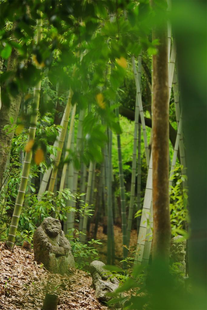石峰寺の写真素材
