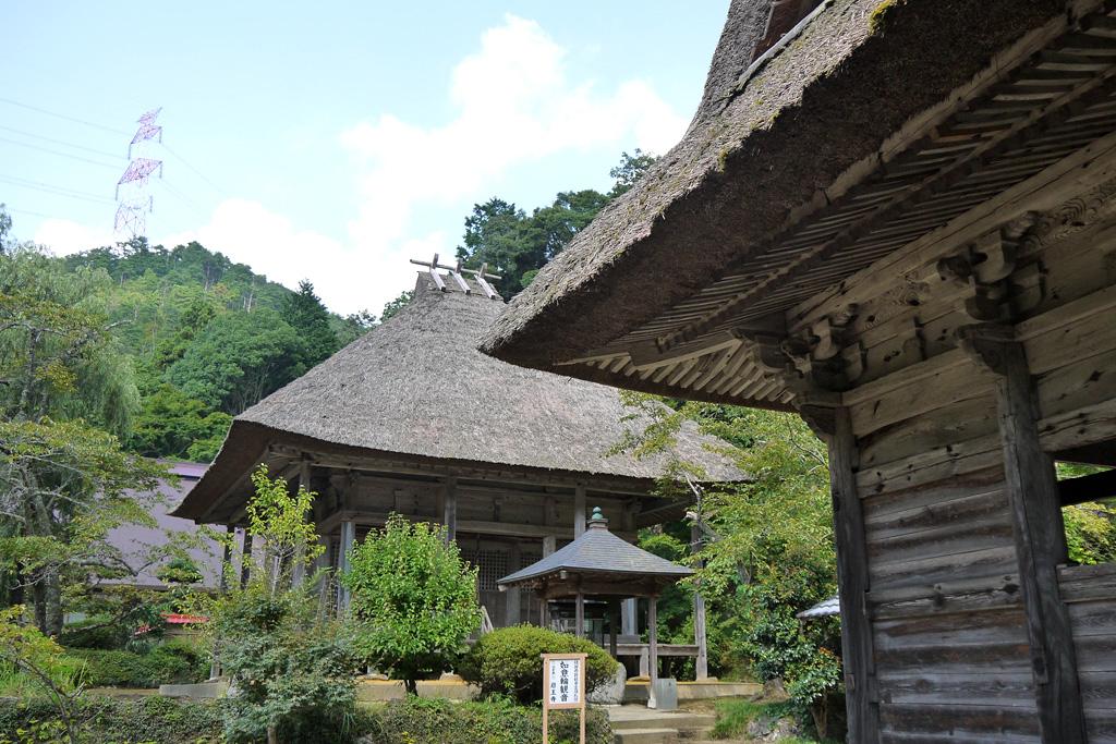 綾部 岩王寺の萩
