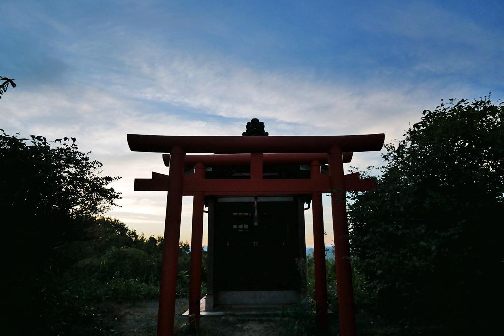 ミツバツツジ 獅子崎稲荷神社の写真素材