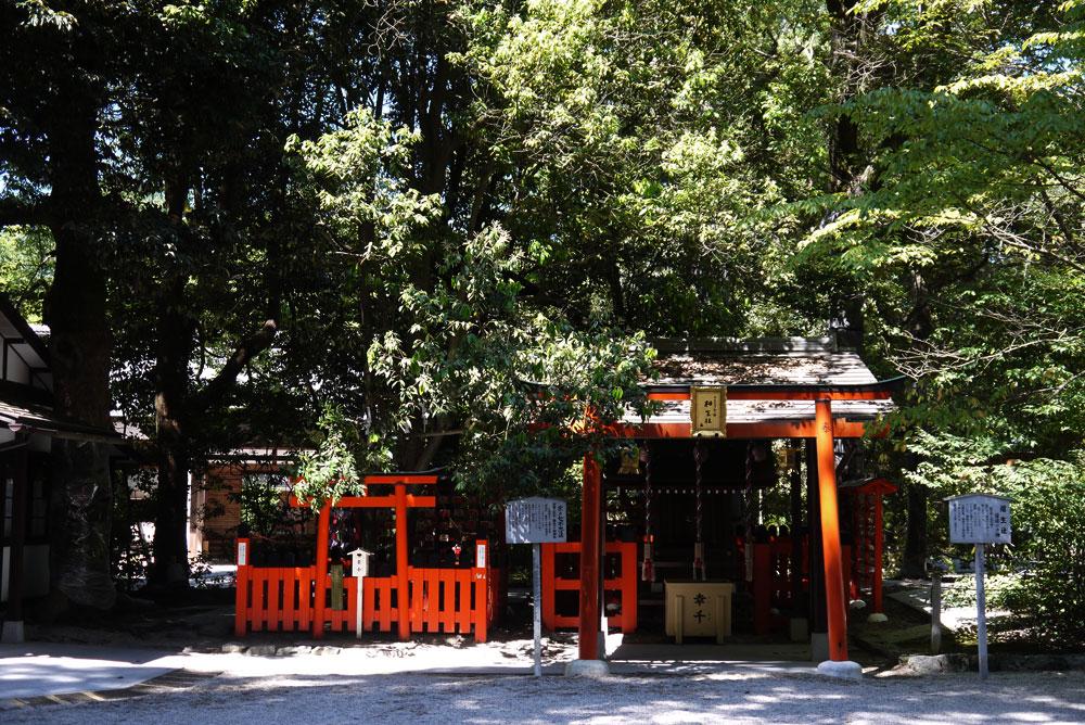 下鴨神社の夏