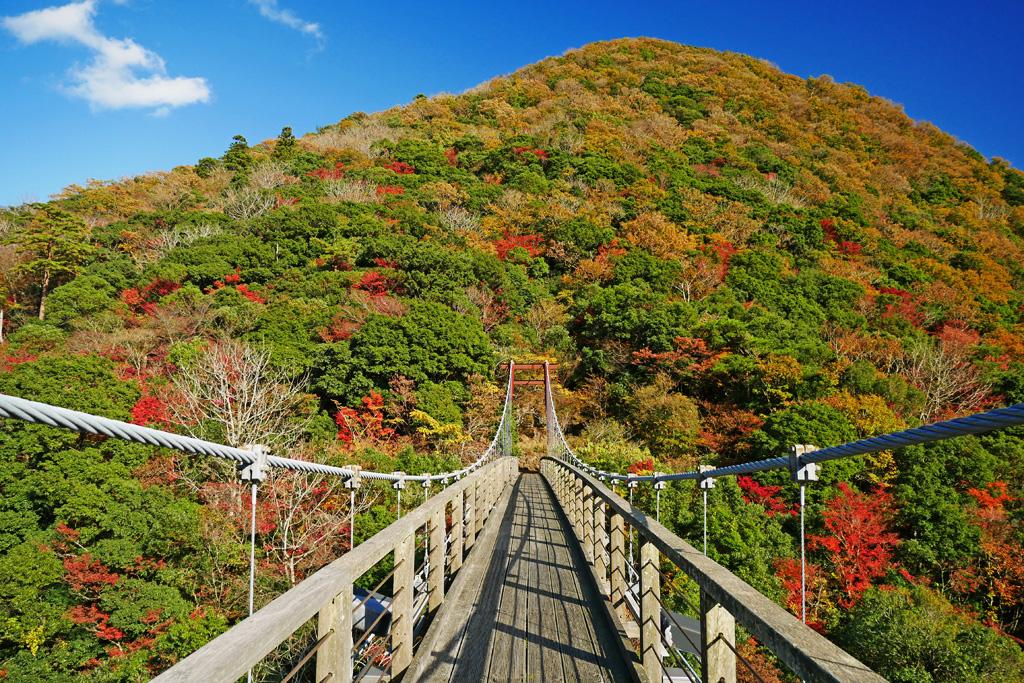 二瀬川渓流 神童子橋の紅葉写真素材