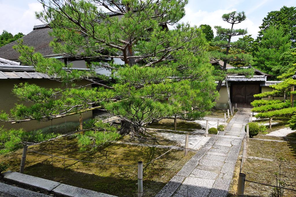 大徳寺 真珠庵の写真素材