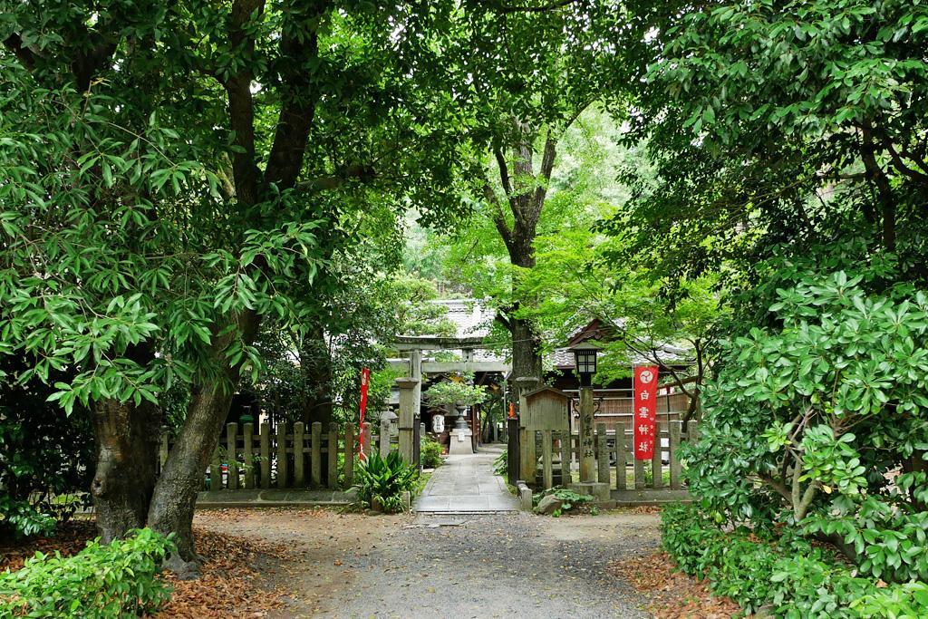白雲神社の写真素材