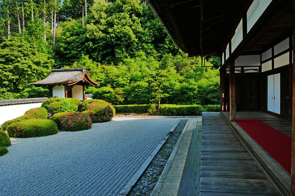 正伝寺の枯山水庭園の写真素材
