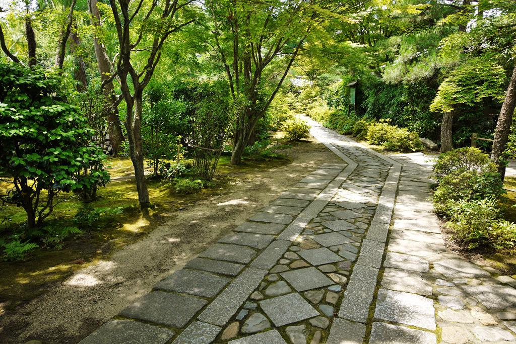大徳寺 正受院の写真素材