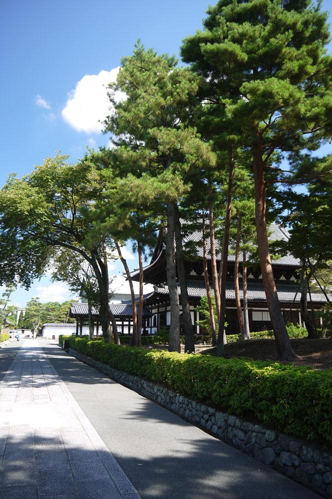 相国寺の夏景色