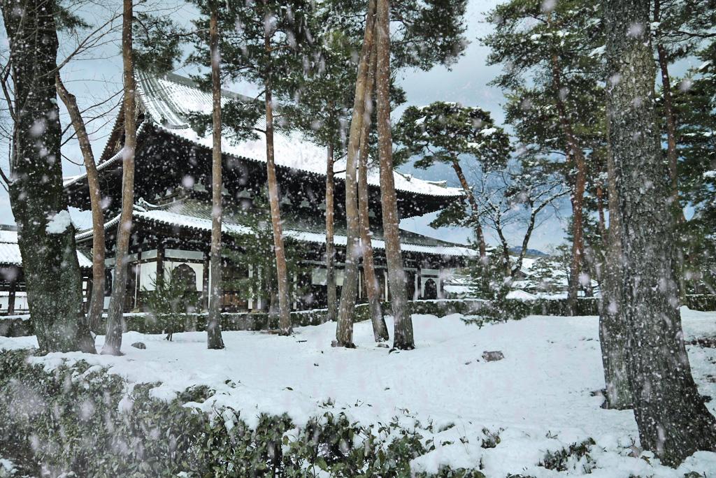 相国寺の雪景色の無料写真素材