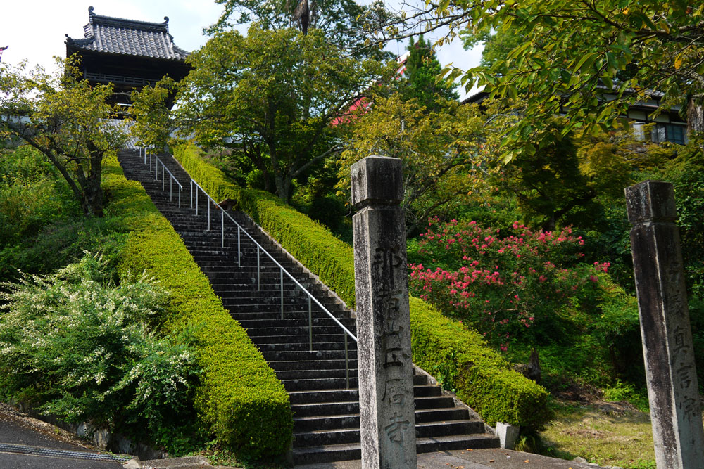 綾部 正暦寺の萩の写真素材