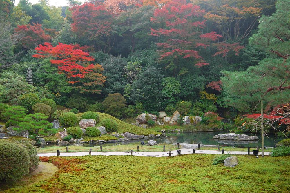 青蓮院門跡の紅葉の写真素材