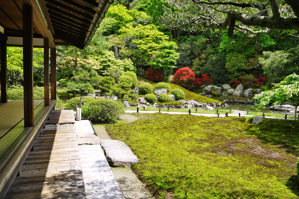 青蓮院相阿弥の庭の写真素材