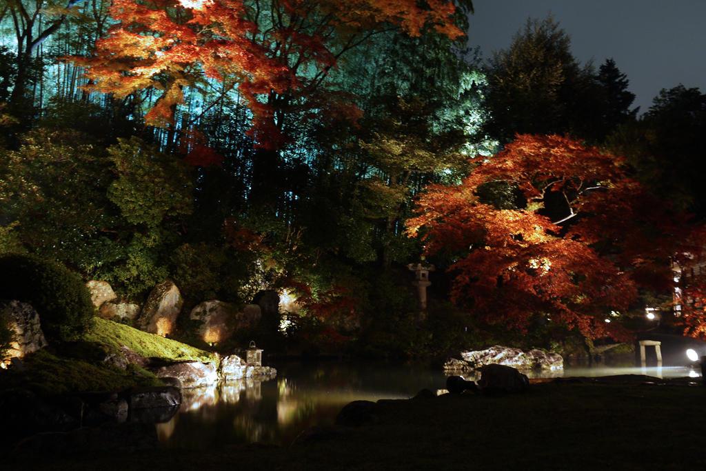 青蓮院門跡の紅葉ライトアップの写真素材