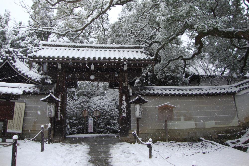 雪の青蓮院門跡の写真素材