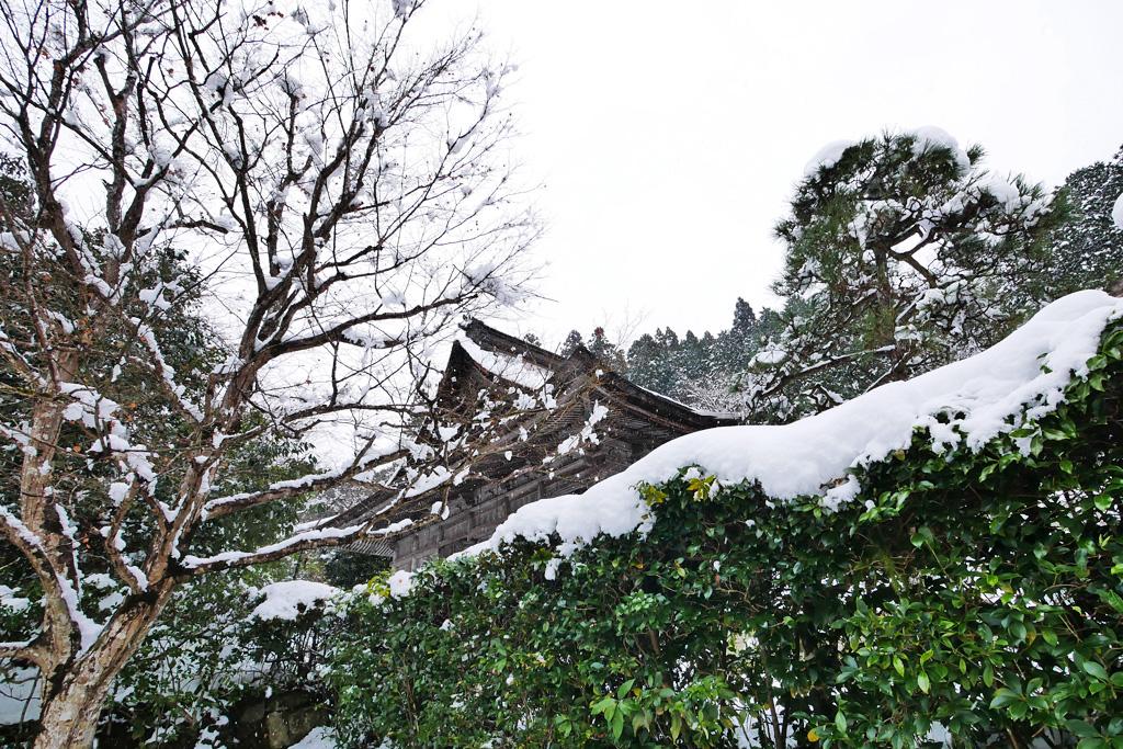 勝林院の写真素材