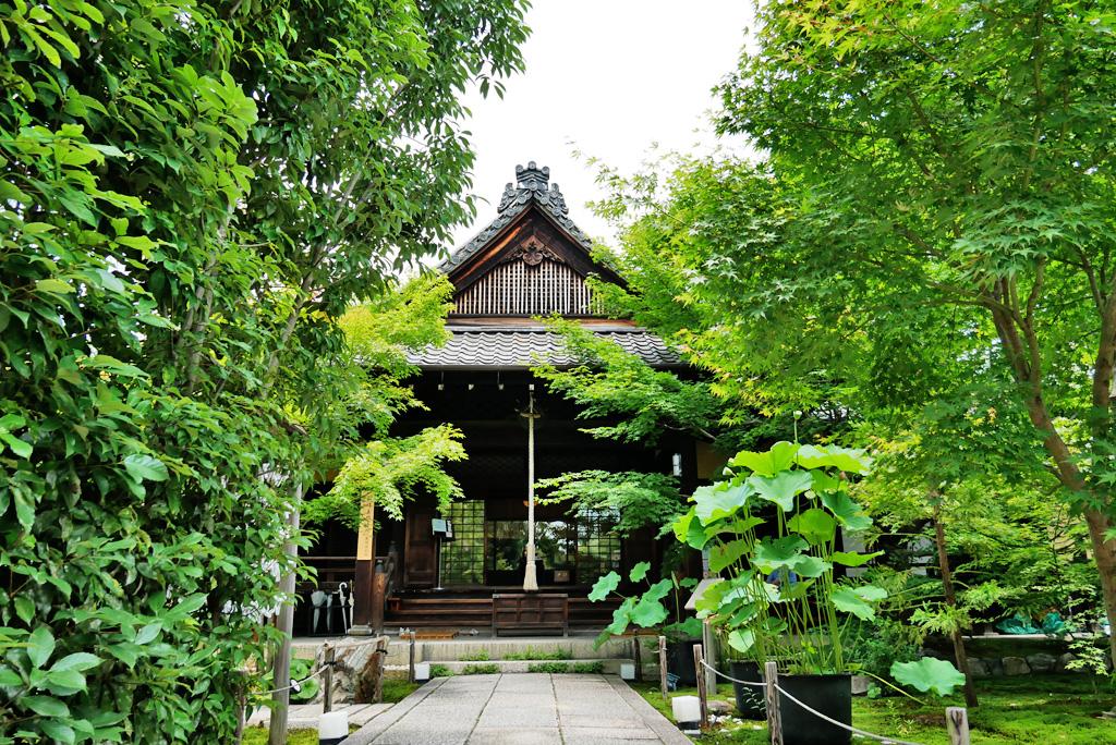 勝林寺(東福寺)の写真素材