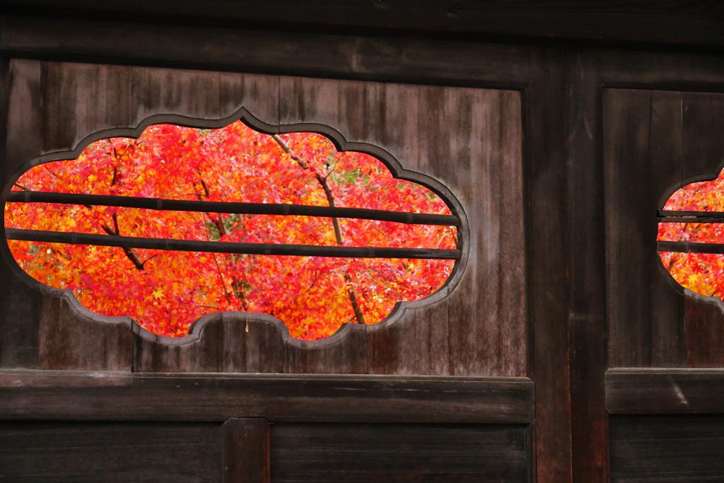 渉成園の紅葉の写真素材