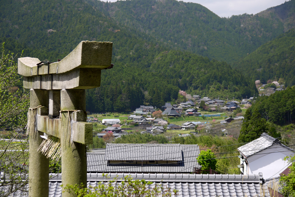 出世稲荷神社の写真