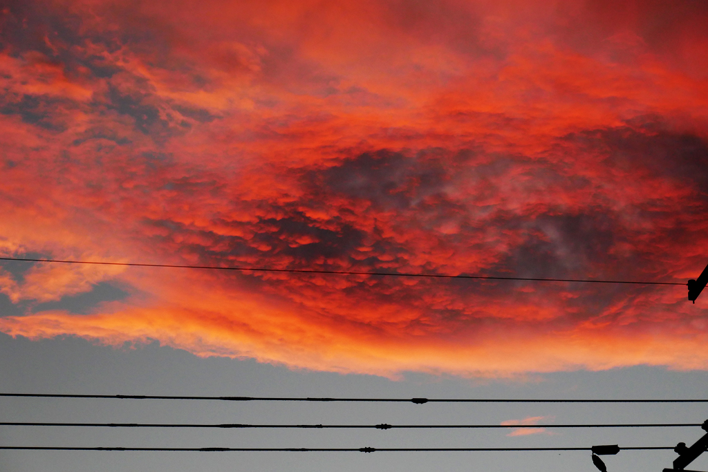 夕焼けの写真素材