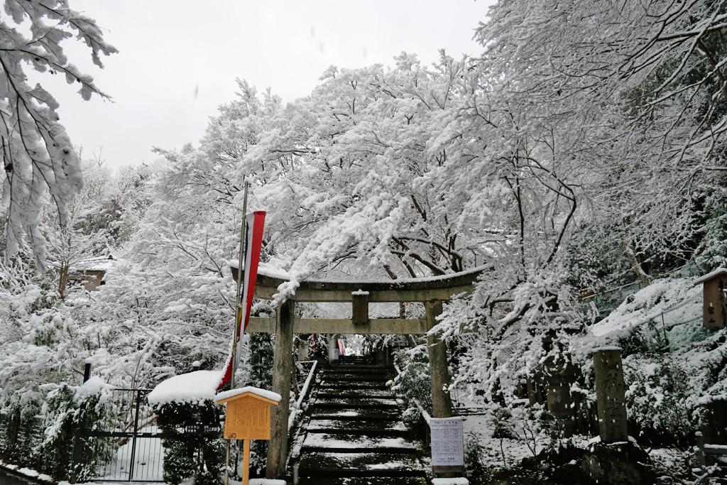 山科聖天の雪の写真素材