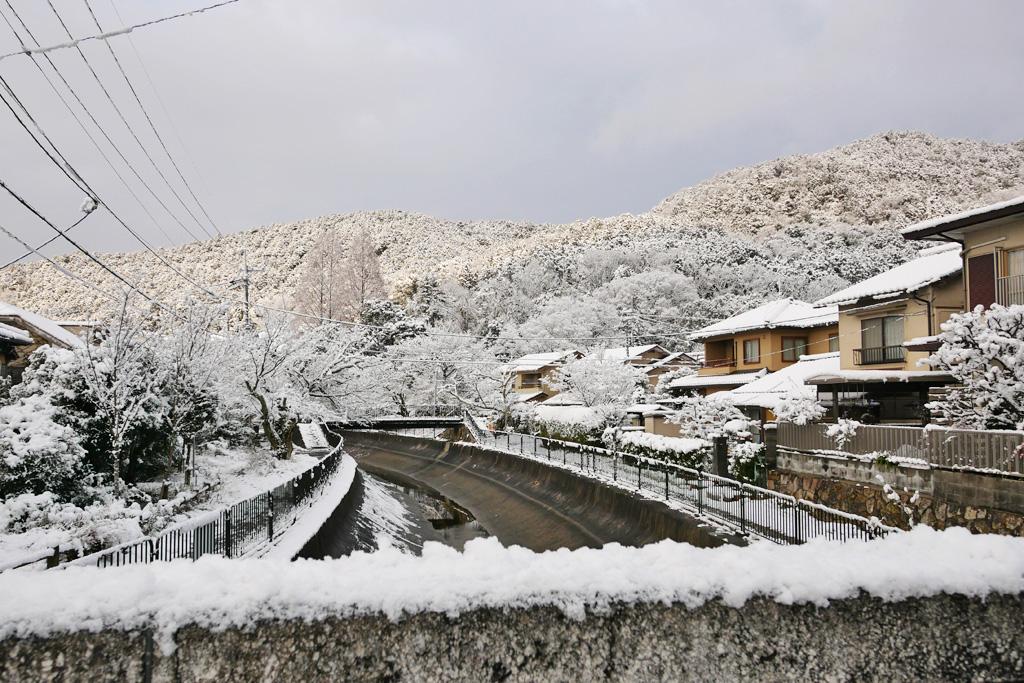 琵琶湖疏水の雪景色の写真素材