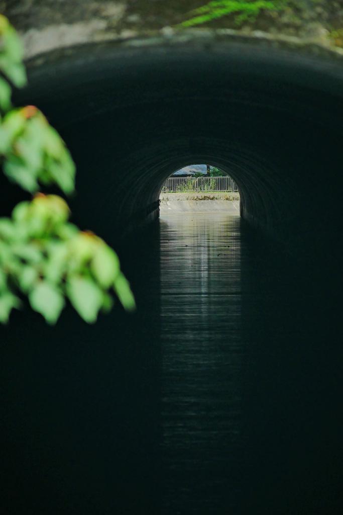 琵琶湖疏水のトンネルの写真素材