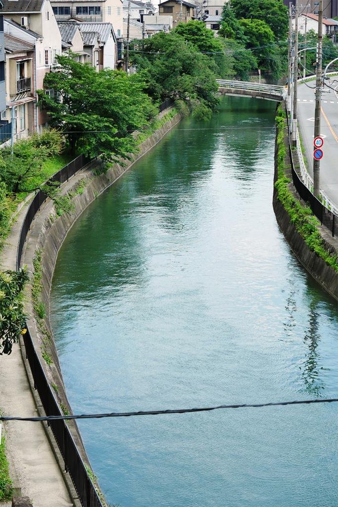 琵琶湖疏水の写真素材