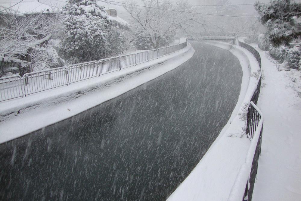 琵琶湖疏水の雪景色