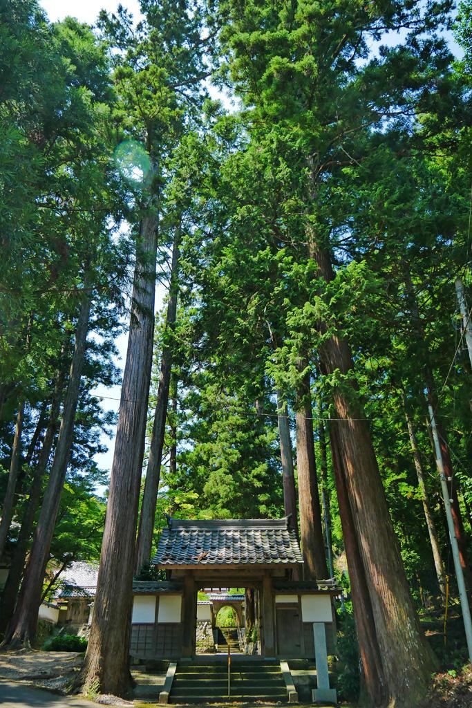宗雲寺の写真素材