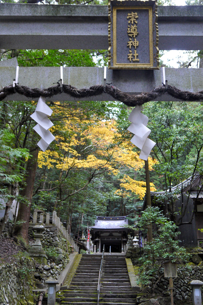崇道神社の写真