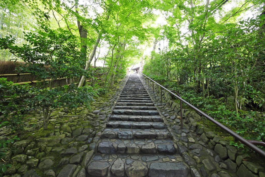 鈴虫寺の写真素材