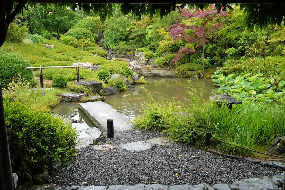妙心寺退蔵院の新緑