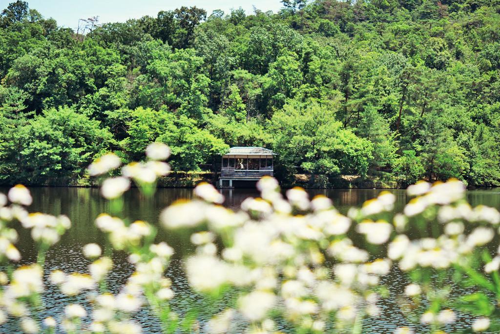 宝ヶ池の写真素材