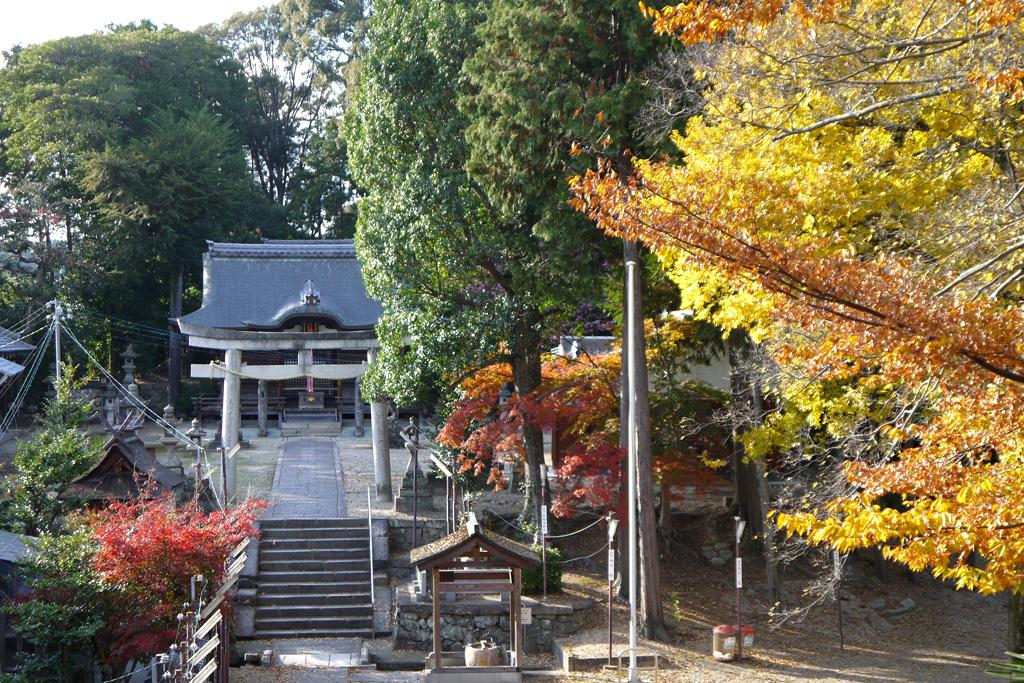 棚倉孫神社の写真