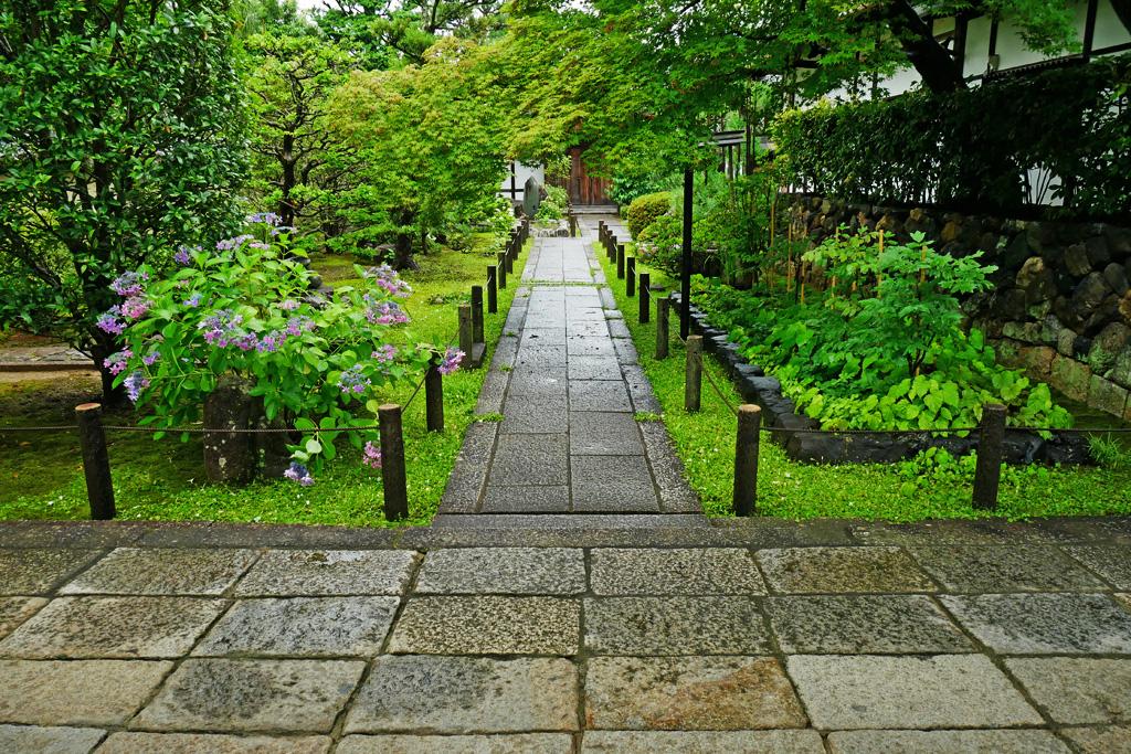 妙心寺 天球院の写真素材
